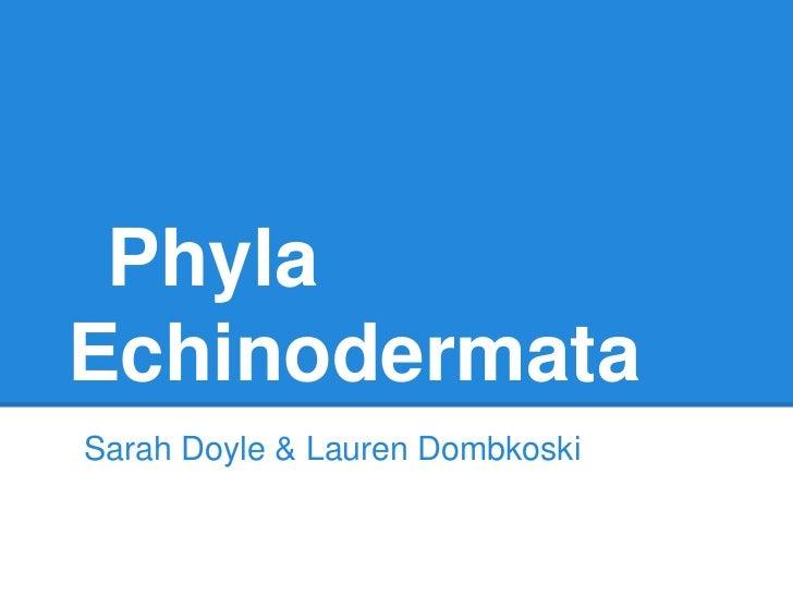 PhylaEchinodermataSarah Doyle & Lauren Dombkoski