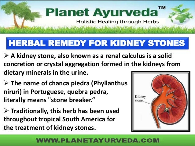 Natural Kidney Stone Treatment Reviews