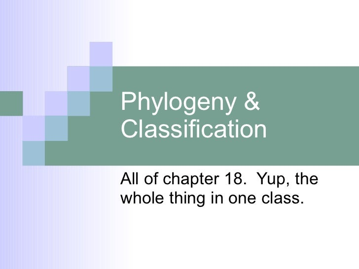 Phylogeny & Classification All of chapter 18.  Yup, the whole thing in one class.