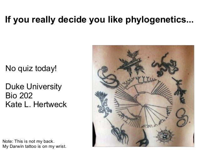 If you really decide you like phylogenetics... No quiz today! Duke University Bio 202 Kate L. HertweckNote: This is not my...