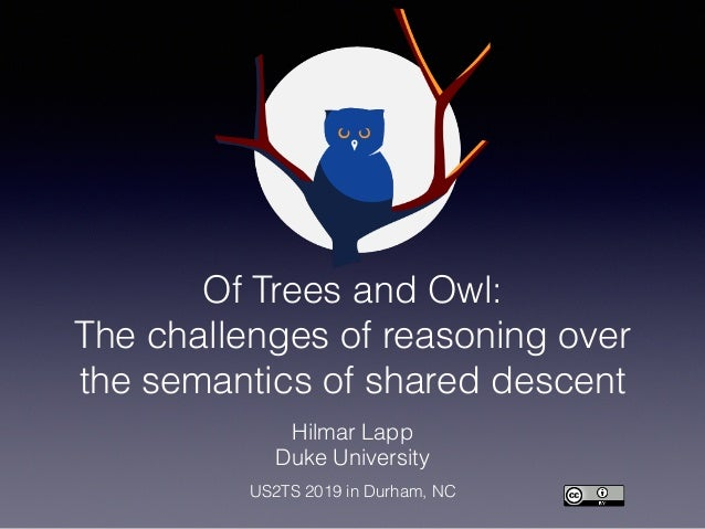 Of Trees and Owl: