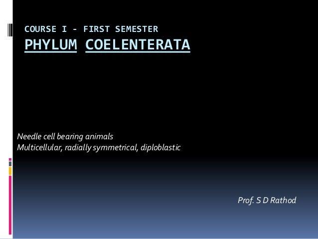 COURSE I - FIRST SEMESTER  PHYLUM COELENTERATANeedle cell bearing animalsMulticellular, radially symmetrical, diploblastic...