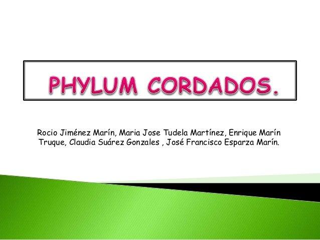Rocio Jiménez Marín, Maria Jose Tudela Martínez, Enrique Marín Truque, Claudia Suárez Gonzales , José Francisco Esparza Ma...