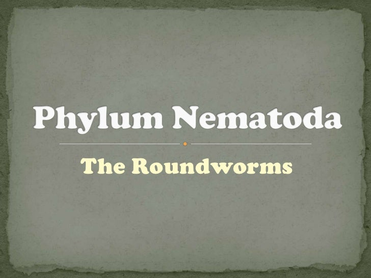 The Roundworms
