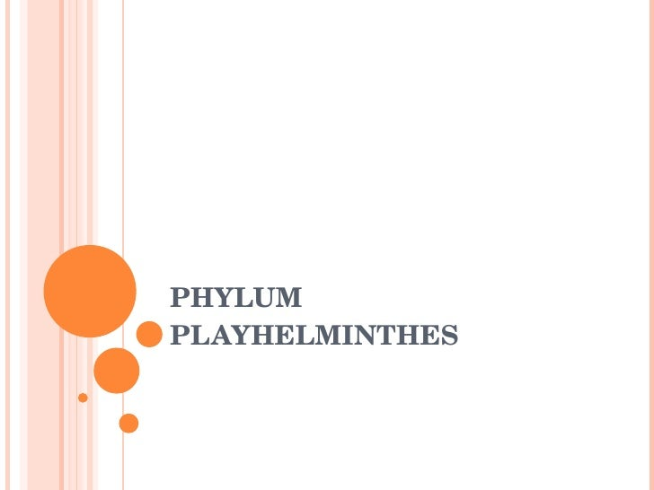 PHYLUM PLAYHELMINTHES