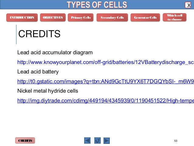 Phyics m4 types of cells 53 objectives primary cells ccuart Images