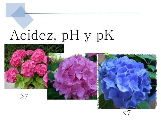 Acidez, pH y pK >7                  <7