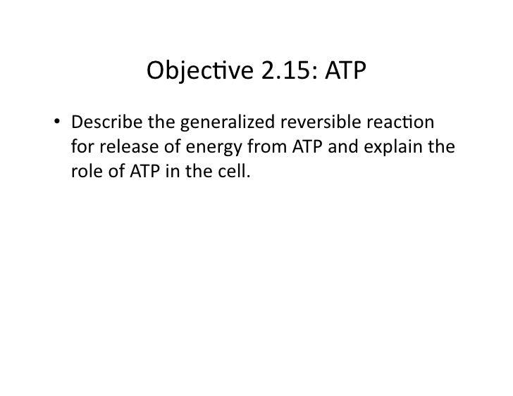 Objec&ve2.15:ATP • Describethegeneralizedreversiblereac&on    forreleaseofenergyfromATPandexplainthe    ...