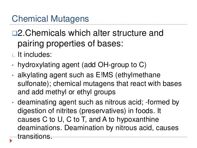 Physical And Chemical Mutagen Copy