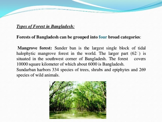 What Are the Natural Resources of Bangladesh
