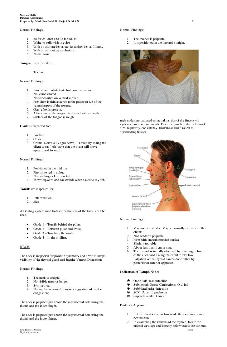 physical assessment handouts, Skeleton