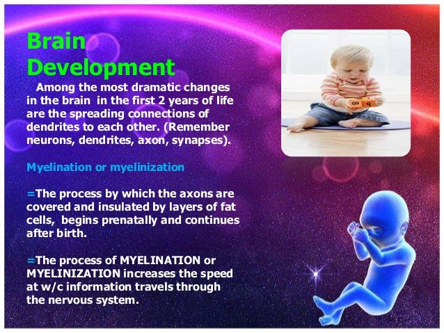 physical development in infancy and toddlerhood