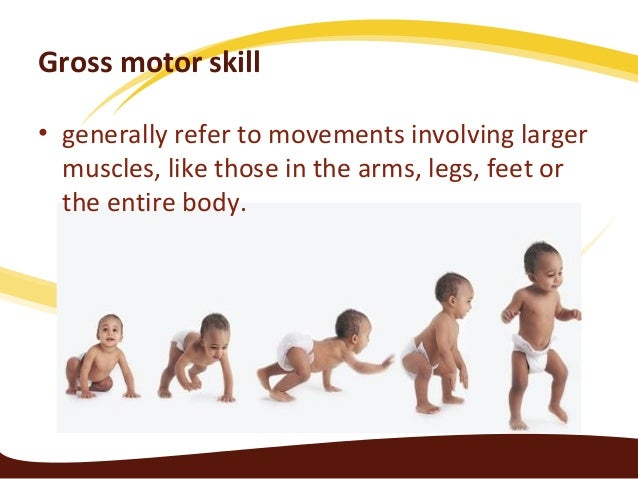 Physical Development Of Infants And Toddlers Part 2