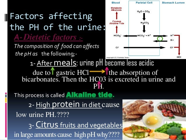 high protein diets ph of urine