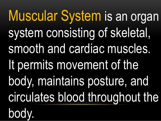 Isometric contraction of a muscle generates force without changing length. An example can be found when the muscles of the...
