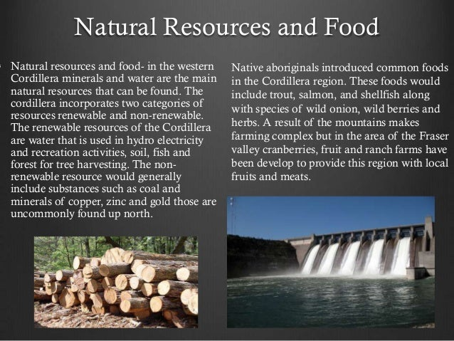 Natural Resources Found In The Northeast Include