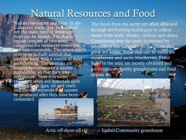 Natural Resources Found In Tundra Region