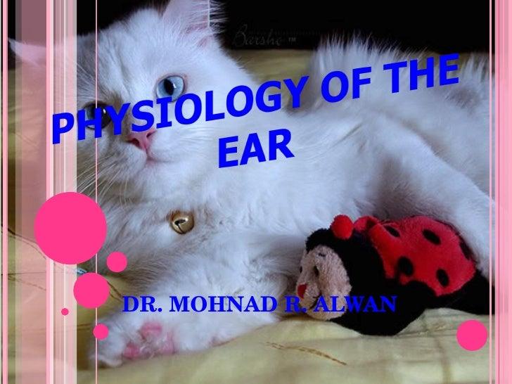DR. MOHNAD R. ALWAN