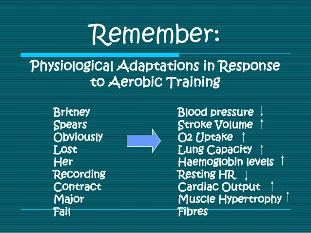 Physiological adaptations in response to aerobic training