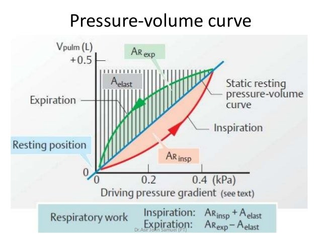 posturing to promote respiratory function essay Describe the structures and functions of the respiratory system organs like the lungs, the throat, and the passageways in between function to take in oxygen and put out carbon dioxide describe the structures and functions of the circulatory system it circulates nutrients and oxygen and removes co2 and it is made up of the heart which powers.