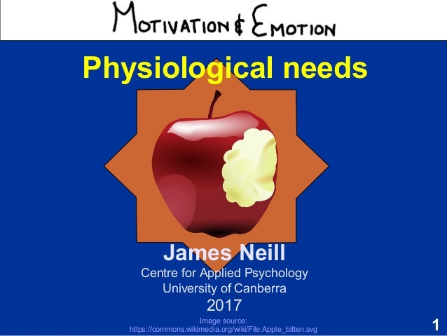 motivation and emotion journal