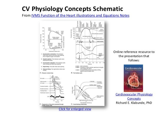 Physiologic and pathophysiologic function of the heart Slide 2