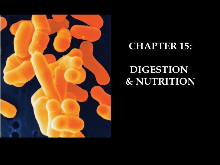 CHAPTER 15: DIGESTION& NUTRITION