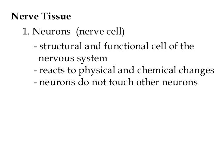 Physiology ch 9 lecture notes