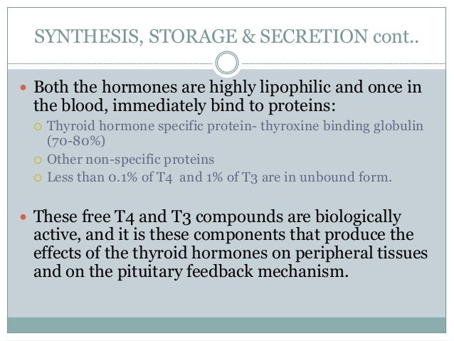 SYNTHESIS, STORAGE & SECRETION cont..  Both the hormones are highly lipophilic and once in the blood, immediately bind to...