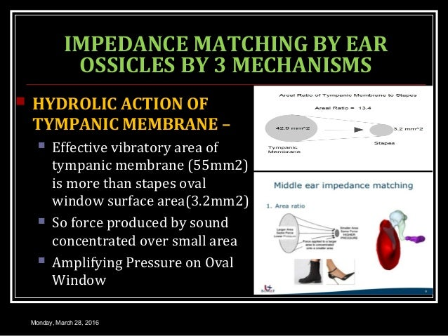 IMPEDANCE MATCHING BY EAR OSSICLES BY 3 MECHANISMS  HYDROLIC ACTION OF TYMPANIC MEMBRANE –  Effective vibratory area of ...