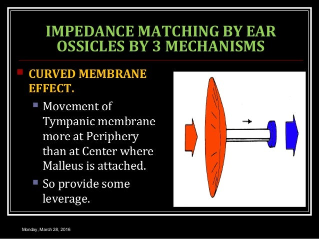 IMPEDANCE MATCHING BY EAR OSSICLES BY 3 MECHANISMS  CURVED MEMBRANE EFFECT.  Movement of Tympanic membrane more at Perip...