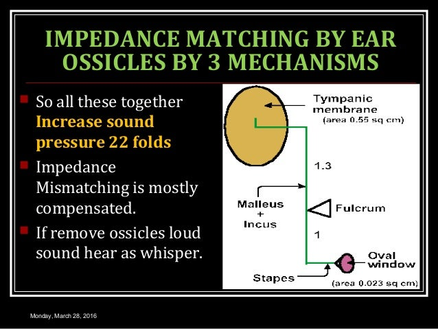 IMPEDANCE MATCHING BY EAR OSSICLES BY 3 MECHANISMS  So all these together Increase sound pressure 22 folds  Impedance Mi...
