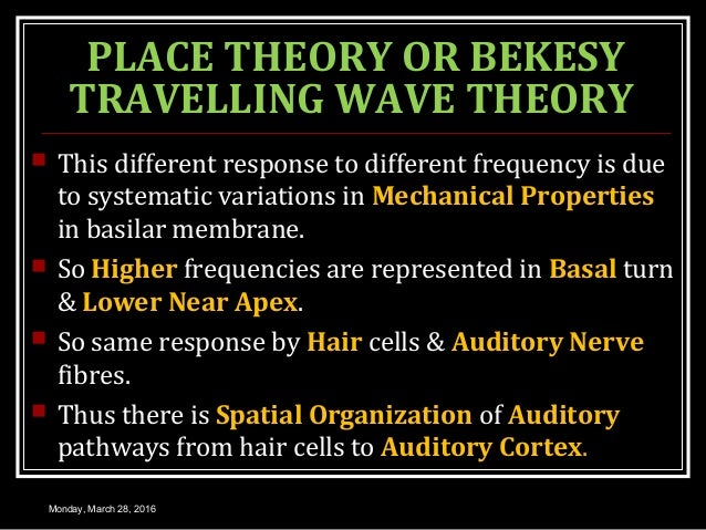 PLACE THEORY OR BEKESY TRAVELLING WAVE THEORY  This different response to different frequency is due to systematic variat...