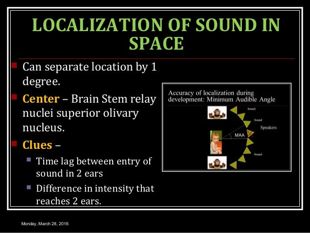 LOCALIZATION OF SOUND IN SPACE  Can separate location by 1 degree.  Center – Brain Stem relay nuclei superior olivary nu...