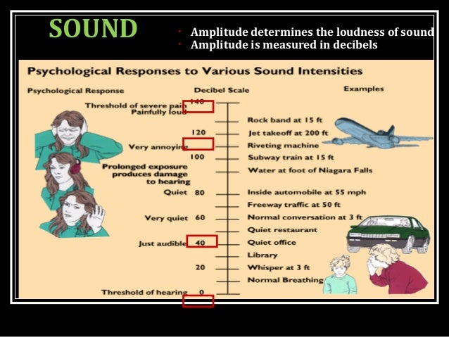 SOUND • Amplitude determines the loudness of sound • Amplitude is measured in decibels