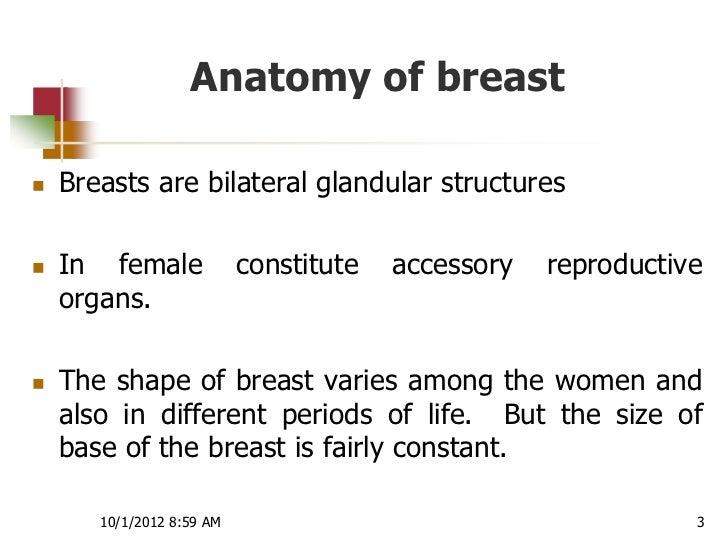Physiology of lactation Slide 3