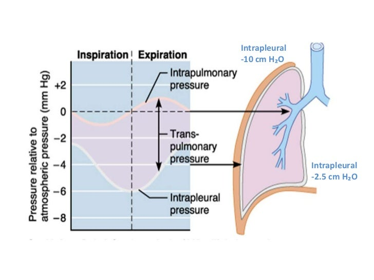 physiology of mechanical ventilation upload gas station clip art images gas pump clip art free