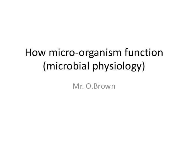 How micro-organism function (microbial physiology) Mr. O.Brown