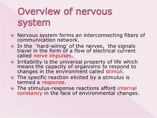 Physiology of neurotransmission Slide 3