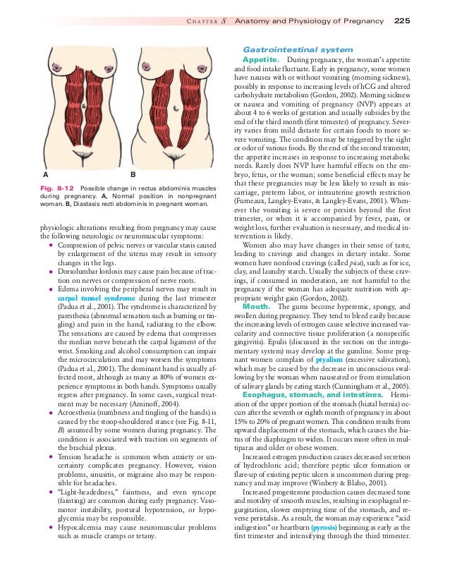 Excelente Essential Anatomy And Physiology In Maternity Care Friso ...