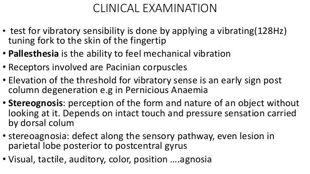 7 senses and An Introduction to Sensory Receptors