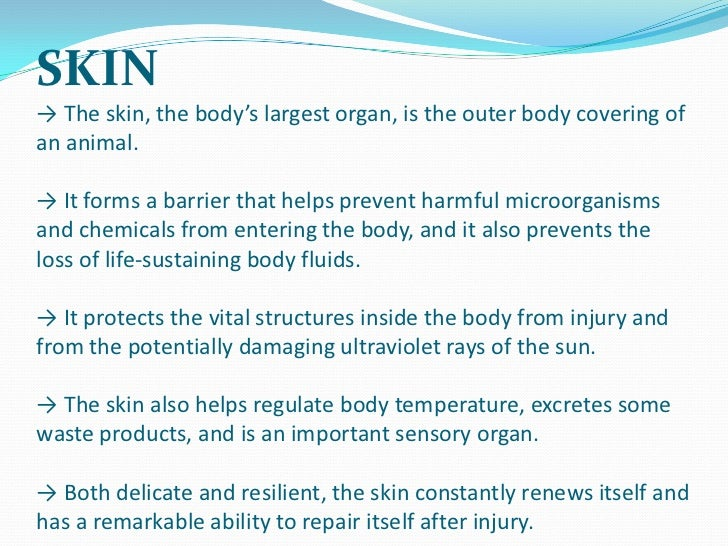 Physiology of skin function