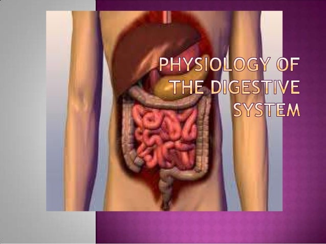 Digestion  is the breakdown of large, complex organic molecules into smaller components that can be used by the body.Mol...