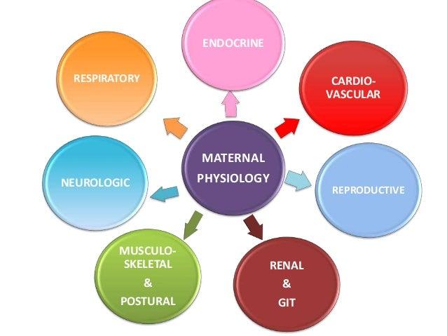 Antenatal &postnatal exercises.