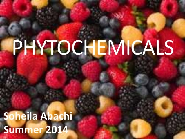 PHYTOCHEMICALS 1 Soheila Abachi Summer 2014
