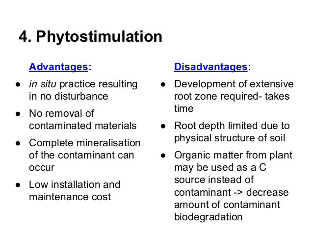The advantages of phytoremedation