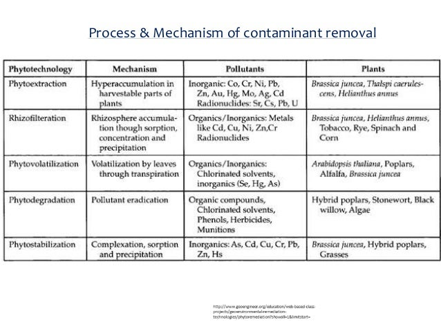 a bio remediation of explosives in contaminated soil Bioremediation study with soils contaminated by explosives at adazhi  use it in soil remediation  conditions of soils contaminated by explosives.