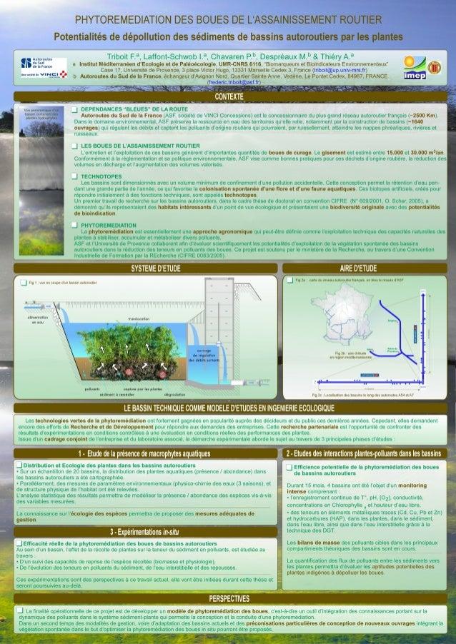 Potentialités de dépollution des sédiments de bassins autoroutiers par les plantes