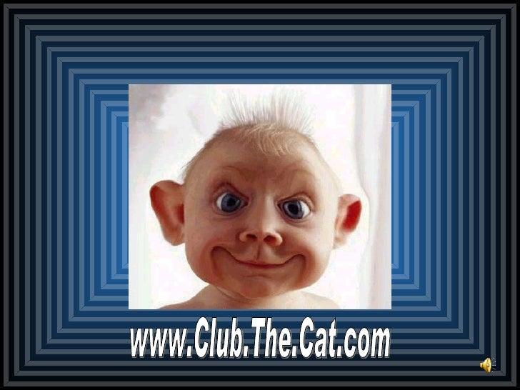 www.Club.The.Cat.com
