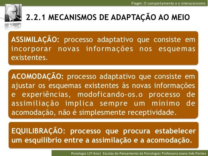 Piaget: O comportamento e o interacionismo    2.2.1 MECANISMOS DE ADAPTAÇÃO AO MEIOASSIMILAÇÃO: processo adapt...